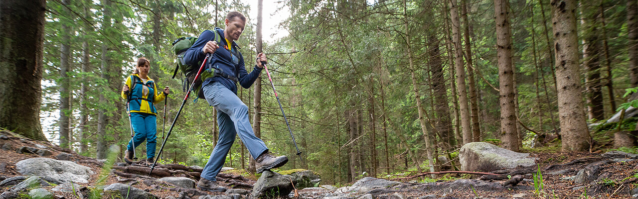 How to choose and why use hiking poles?